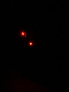wowow multilight magnetlight c'est bien d'être bien cbdb