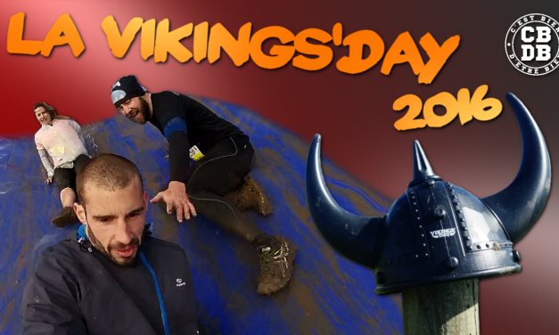 Vikings'day 2016