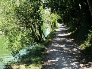 conseil courir temps chaud running trail