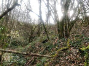 trail des grands couteliers nontron 2019
