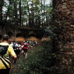 Trail des Châtaignes 2019